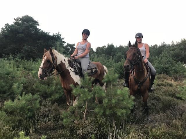 Paardrijden op de Hoge Veluwe bij The Mill Ranch
