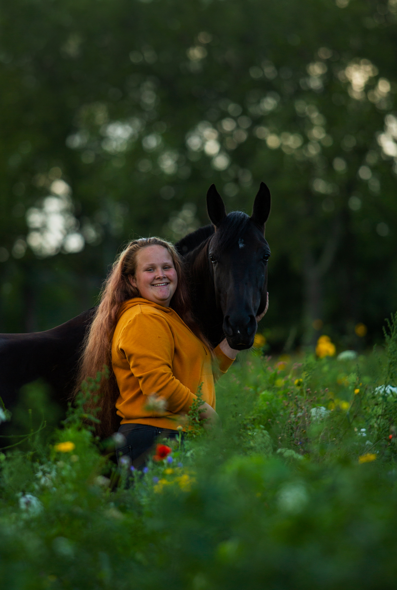 paardenfotografie zonsondergang